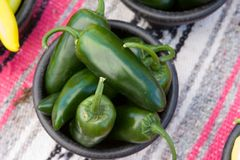 Green hot jalapenos. A bowl of jalapeno peppers for sale Royalty Free Stock Photography