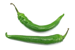 Green hot pepper Royalty Free Stock Image