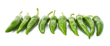 Green hot pepper in a row Stock Photography