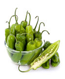 Green hot peppers Stock Image