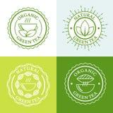 Green hot tea in mug and tea leaves, natural herbal drink. Set o Stock Image