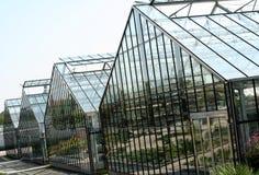 Green house. Glass green house garden production Royalty Free Stock Photos