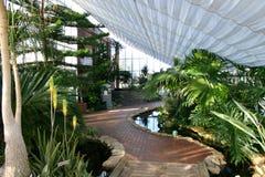 Green House. Exhibit stock image