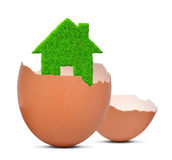 Green house in eggshell Royalty Free Stock Image