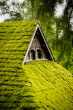 Green house. With grass on tho roof Stock Photos
