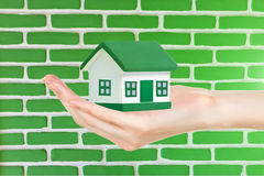 Green house in hand royalty free stock image