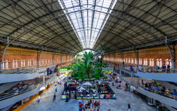 Green house inside Atocha Train Station Royalty Free Stock Images