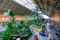 Green house inside Atocha Train Station. Madrid, Spain stock photography