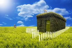 Green house paradise - a perfect home Royalty Free Stock Photography
