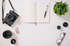 Green house plant standing near the notebook Royalty Free Stock Photography