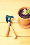 Green house plants in brown clay pots on an old wooden background succulent. Gardening tools. instagram filter Stock Photography