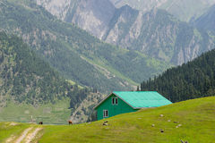 Green house at Sonamarg. India Royalty Free Stock Photo