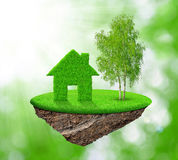Green house and tree Stock Image