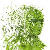 Green human head into pieces Royalty Free Stock Photo