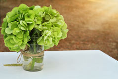 Green hydrangea bouquet. Autumn wedding flower decoration Royalty Free Stock Photos