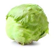Green Iceberg lettuce Stock Image