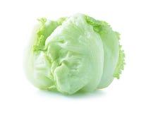 Green Iceberg lettuce on White Background Stock Photography