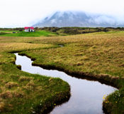 Green Iceland landscape Snaefellsnes Stock Images