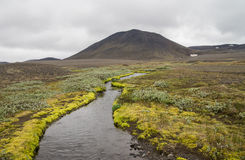 Green icelandic landscape with stream Stock Photos