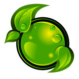 Green icon Royalty Free Stock Photos