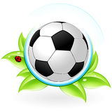 Green icon. With leaves and football for your design Stock Photography