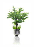 Green idea Stock Image