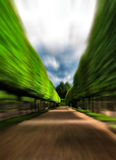 Green idyllic tree alley park motion abstract Royalty Free Stock Images