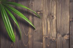 Green Ieaf background around old wood with space, Vintage toned. Royalty Free Stock Image