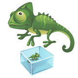 Green iguana and one frozen in the ice. Vector Stock Image