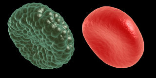 Green illness and red blood cell Royalty Free Stock Photography