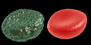 Green illness and red blood cell Royalty Free Stock Image
