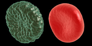 Green illness and red blood cell Royalty Free Stock Images