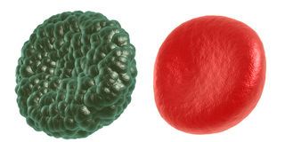 Green illness and red blood cell Stock Image