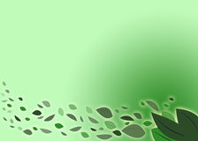 A green illustration with leaves Royalty Free Stock Photos