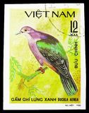 Green Imperial-pigeon (Ducula aenea), Doves serie, circa 1981. MOSCOW, RUSSIA - SEPTEMBER 26, 2018: A stamp printed in Vietnam shows Green Imperial-pigeon ( royalty free stock photography