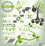 Green Infographics Stock Photography