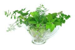 Green ingredients Stock Photo