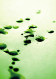 Green ink splotches. Ink droplets on paper - short depth of field Royalty Free Stock Photo