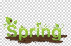 Green inscription Spring with drops of water, leaves, ladybug and earth. Spring in the Earth on a transparent background royalty free illustration