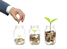 Green investment. Business growth with csr practice / Green investment concept Royalty Free Stock Photography