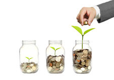 Green investment Stock Images