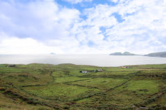 Green irish fields and skellig rock view Royalty Free Stock Photo