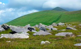 Green irish landscape Royalty Free Stock Image