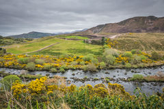 Green Irish landscape Royalty Free Stock Image
