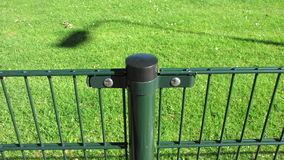 Green iron fence with pile. Green iron fence to mark field. Construction fence Stock Photos