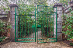 The green iron gate Stock Image