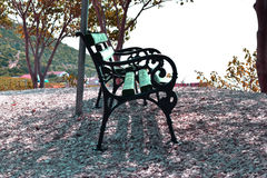 Green iron and wood bench in the shade Royalty Free Stock Photo