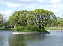 Green island Stock Image