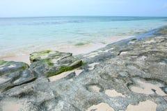 Green island beach Stock Image