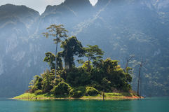 Green island, Khao Sok National Park. Lush green island on Cheow Lan Lake, Khao Sok National Park in southern Thailand Royalty Free Stock Photos